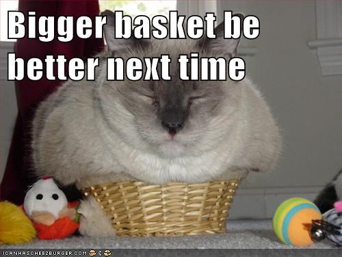 Bigger basket be better next time