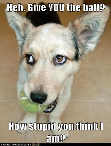 Heh. Give YOU the ball?  How stupid you think I am?