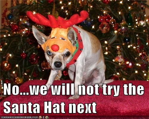 No...we will not try the Santa Hat next