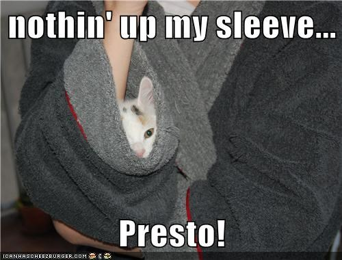 nothin' up my sleeve...  Presto!