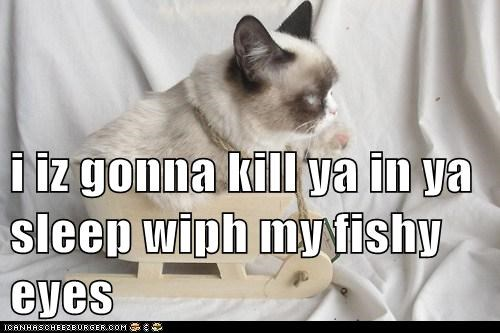 i iz gonna kill ya in ya sleep wiph my fishy eyes