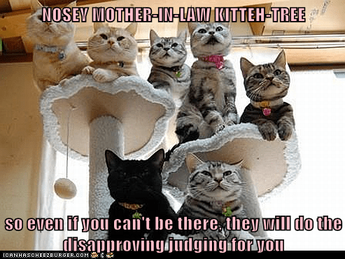 cuckold captions mother in law