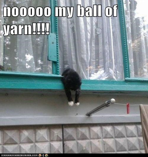 nooooo my ball of yarn!!!!