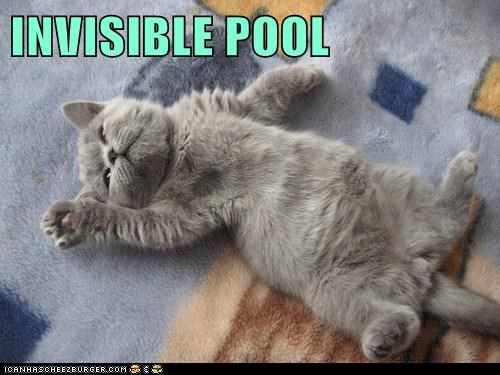 INVISIBLE POOL