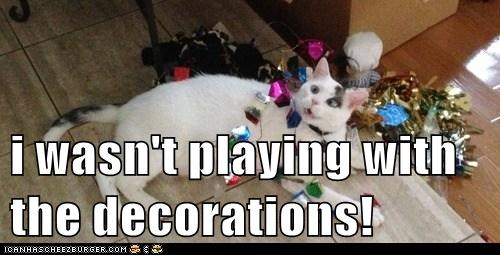 i wasn't playing with the decorations!