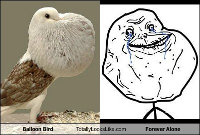 Balloon Bird Totally Looks Like Forever Alone