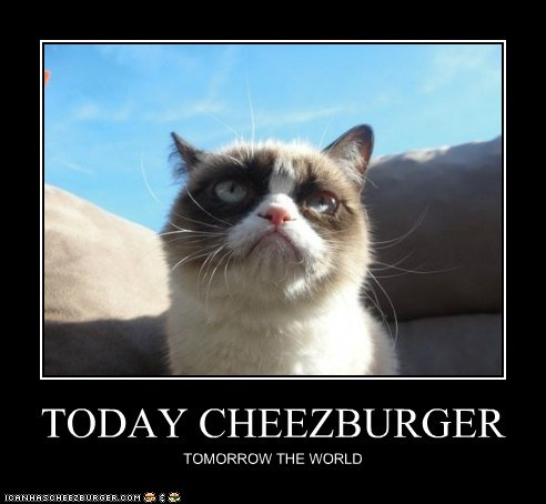 TODAY CHEEZBURGER