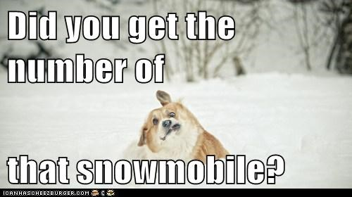 Did you get the number of  that snowmobile?