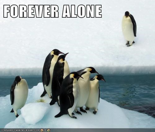 forever alone,real life,penguins,Memes,socially awkward penguins