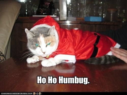 Ho Ho Humbug.