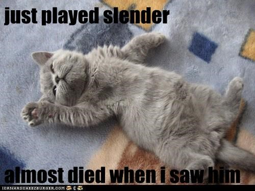 just played slender  almost died when i saw him