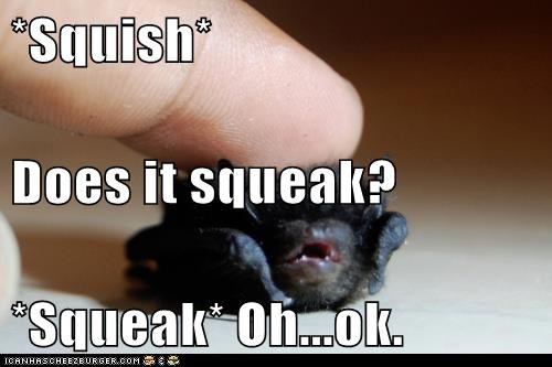 *Squish* Does it squeak? *Squeak* Oh...ok.