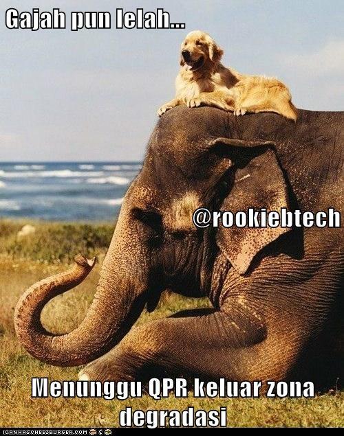 Gajah pun lelah... @rookiebtech Menunggu QPR keluar zona degradasi