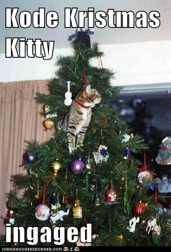 Kode Kristmas Kitty  ingaged
