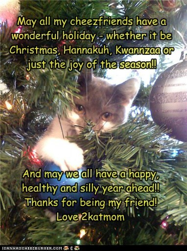 May all my cheezfriends have a wonderful holiday - whether it be Christmas, Hannakuh, Kwannzaa or just the joy of the season!!