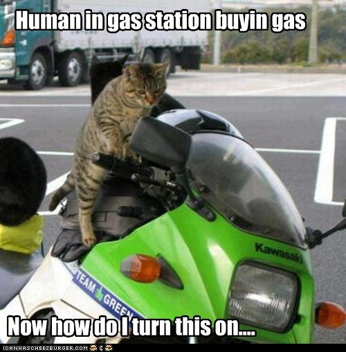 Human in gas station buyin gas
