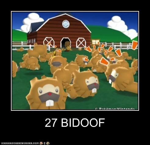 27 BIDOOF