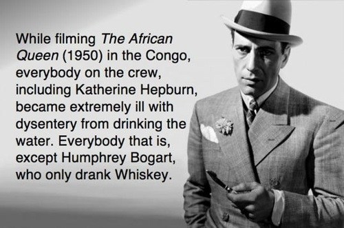 The Lesson Here is the Always Drink Whiskey