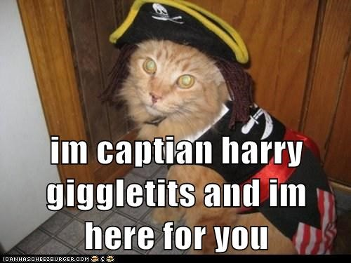 im captian harry giggletits and im here for you