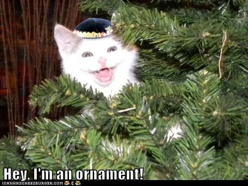 Hey, I'm an ornament!