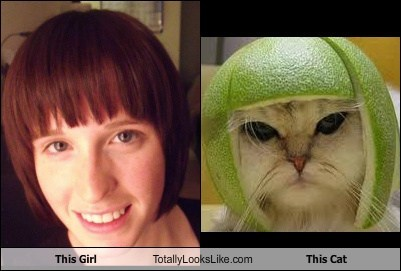 This Girl Totally Looks Like This Cat