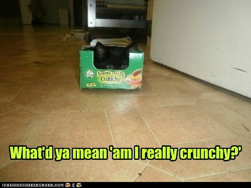 What'd ya mean 'am I really crunchy?'