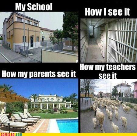 School is a Matter of Perception