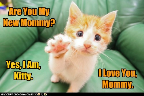 Are You My New Mommy?
