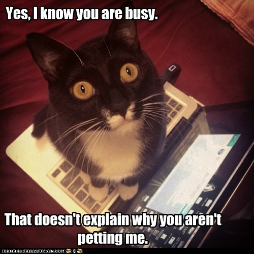 Yes, I know you are busy.