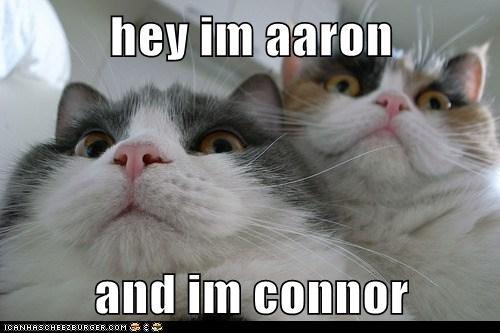 hey im aaron  and im connor