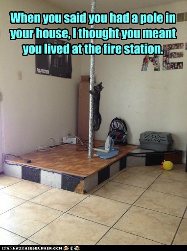 fireman,fire station,stripper pole,pole,captions,Cats
