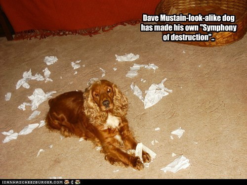"Dave Mustain-look-alike dog has made his own ""Symphony of destruction"".."
