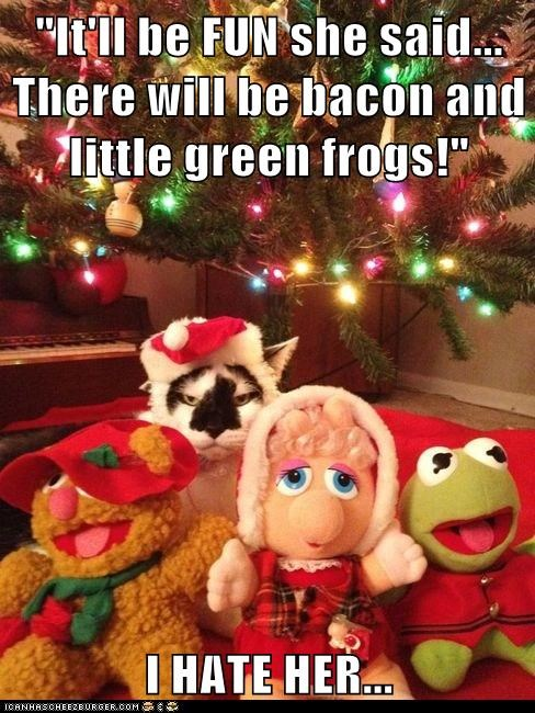 """It'll be FUN she said... There will be bacon and little green frogs!""  I HATE HER..."