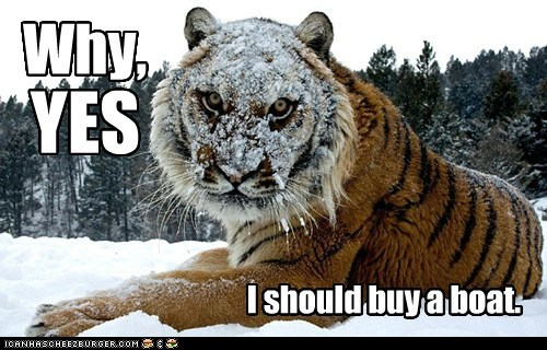 tigers,i should buy a boat,Cats,rich,yes