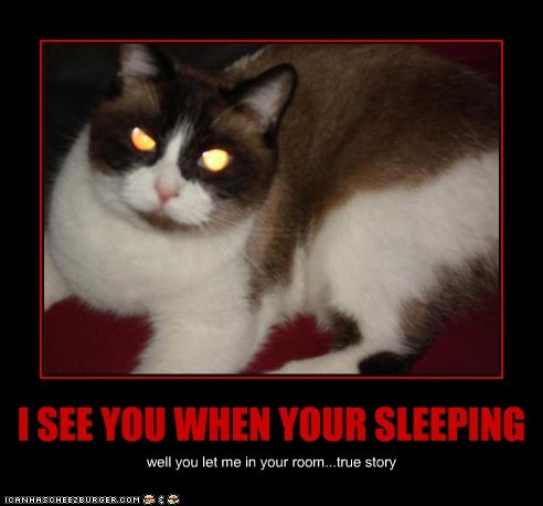 I SEE YOU WHEN YOUR SLEEPING