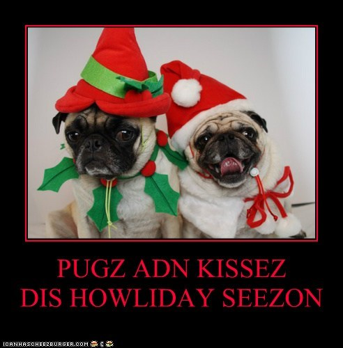 PUGZ ADN KISSEZ         DIS HOWLIDAY SEEZON