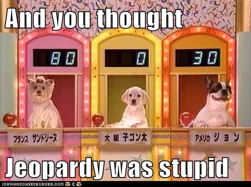 And you thought  Jeopardy was stupid