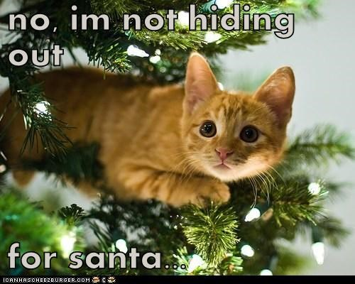 no, im not hiding out  for santa...