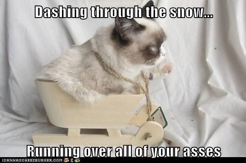 Dashing through the snow...  Running over all of your asses