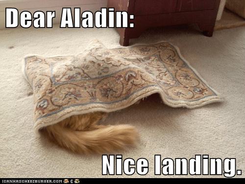 landing,rug,captions,aladdin,hide,Cats,magic carpet,carpet