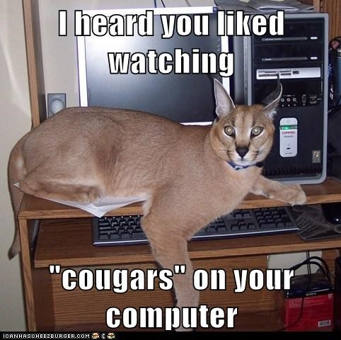 """I heard you liked watching  """"cougars"""" on your computer"""