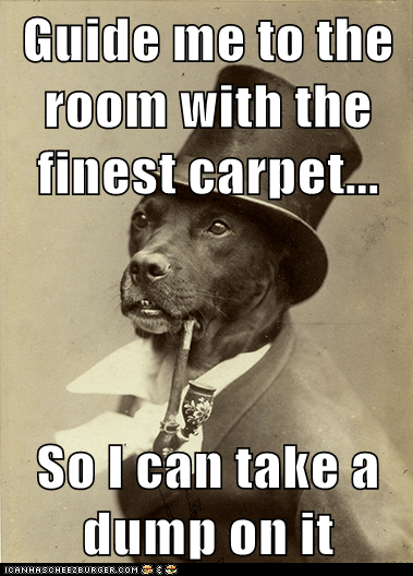 Guide me to the room with the finest carpet...  So I can take a dump on it