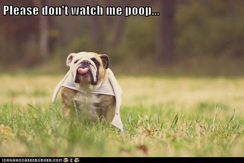 Please don't watch me poop...
