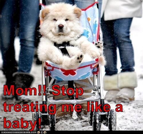 Mom!! Stop treating me like a baby!
