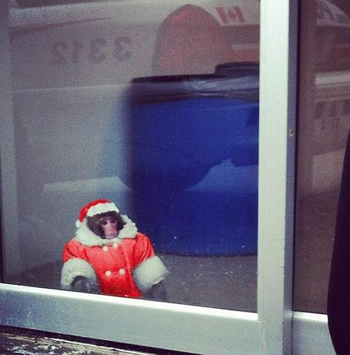 IKEA Monkey Loves the Holidays