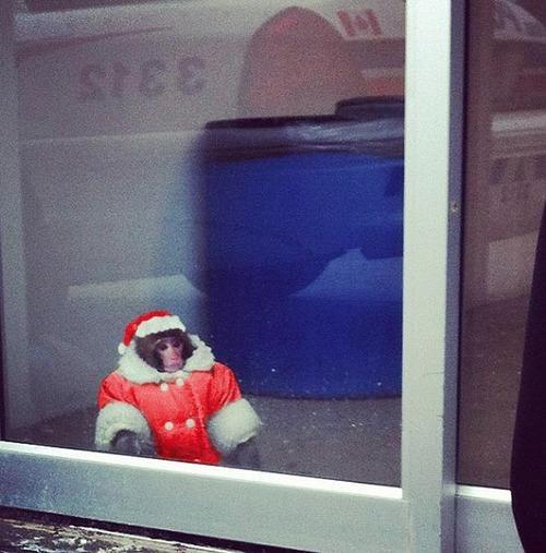 IKEA Monkey Loves the Holidays