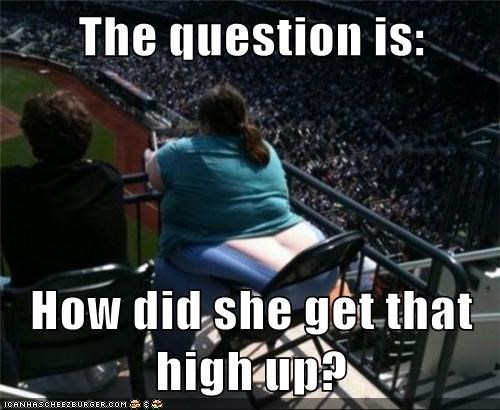 The question is:  How did she get that high up?