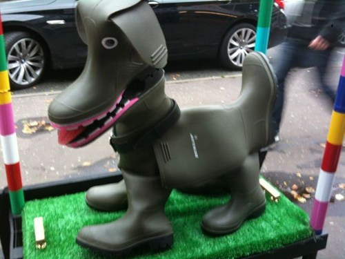 boots,dogs
