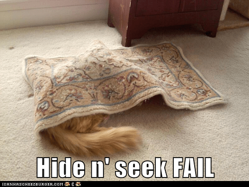 Hide n' seek FAIL