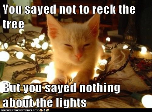 You sayed not to reck the tree  But you sayed nothing about the lights
